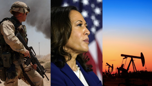 OPINION: Kamala Harris says future wars will be fought over water – should we be worried?